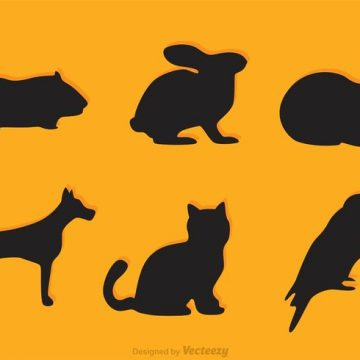 360x360 Guinea Pig Silhouette Archives My Graphic Hunt