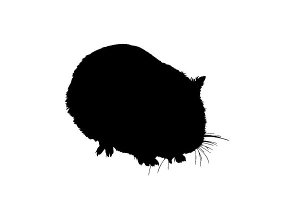 570x428 Guinea Pigs Silhouettes