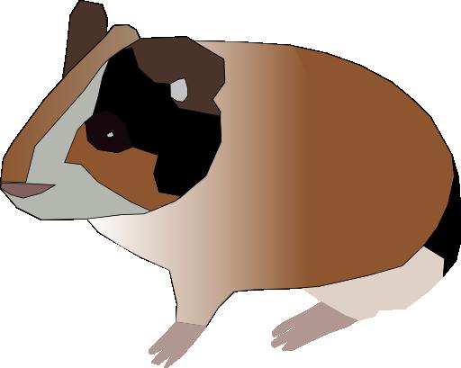 512x409 Guinea Pig Clipart I2clipart