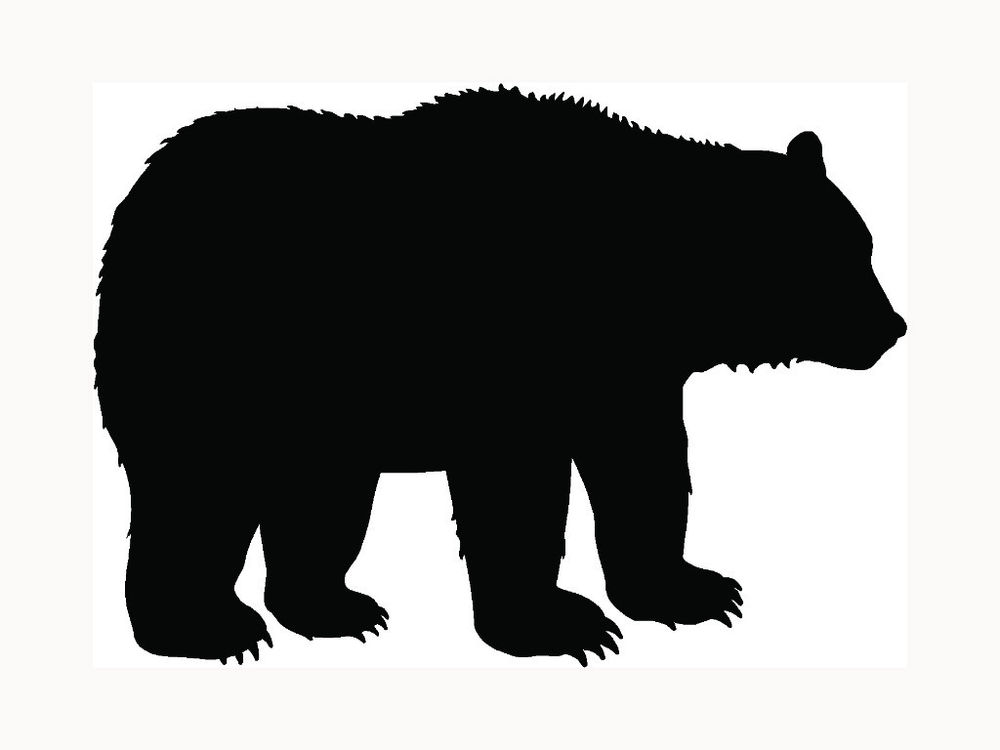 1000x750 Stickers For Bear Arms Grizzly Bear Bumper Sticker