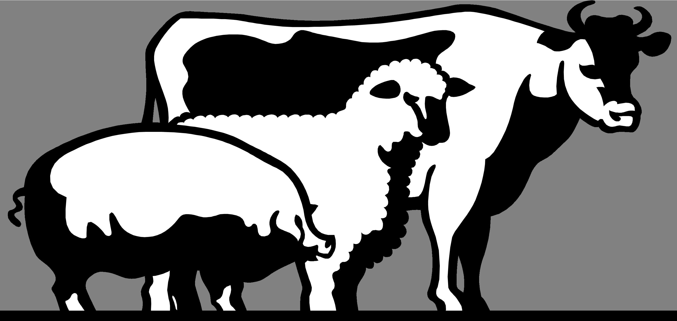 2860x1356 4 H Livestock Of Clipart