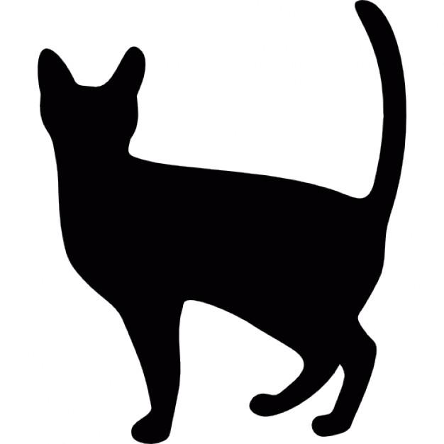 626x626 Halloween Black Cat Icons Free Download