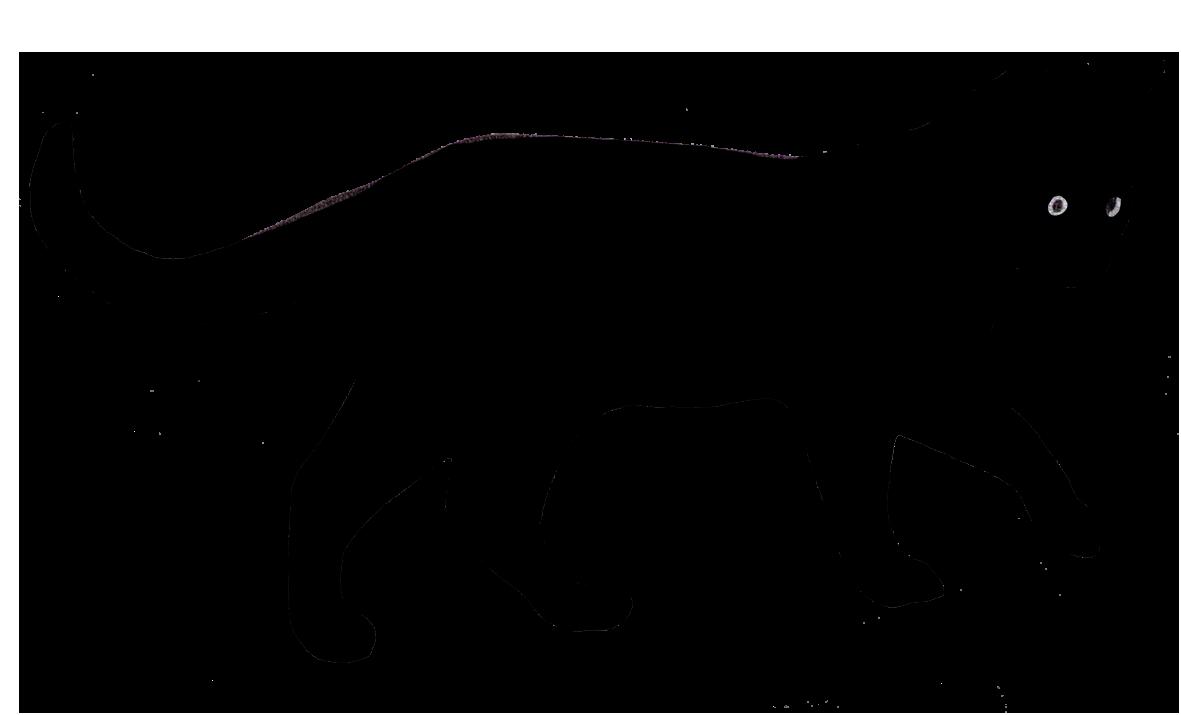 1181x715 Black Cats Clipart