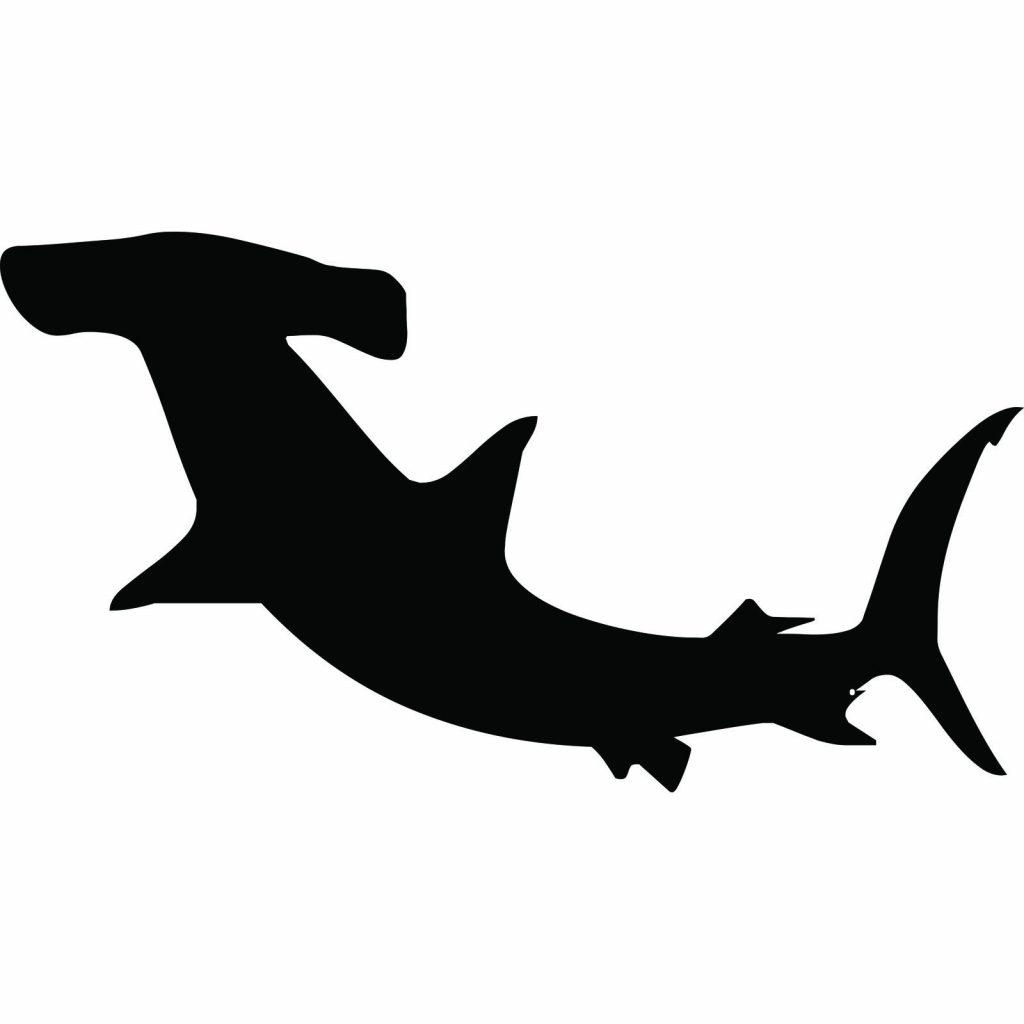 1024x1024 Top Hammerhead Shark Clipart Drawing