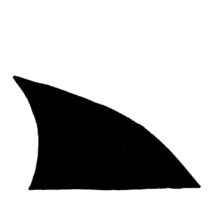 872x814 Hammerhead Shark Clipart Shark Fin
