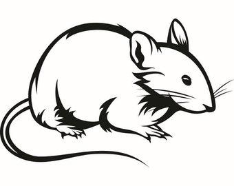 340x270 Hamster Clip Art Etsy