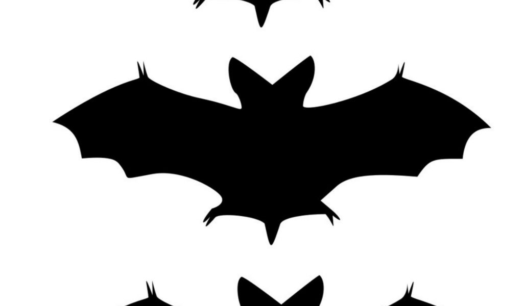 1024x600 Bat Template. Bat Template Template Bat Outline Best Bat Template
