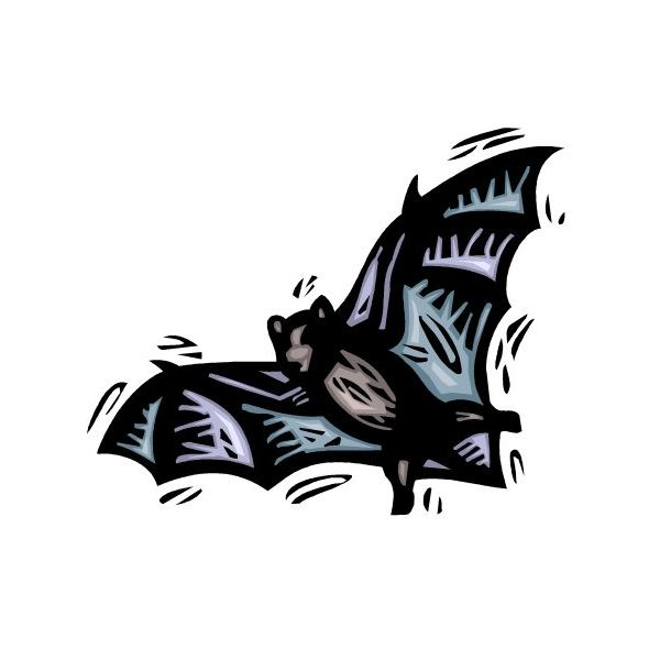 Hanging Bat Silhouette Template At Getdrawings Free For