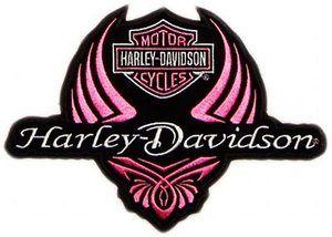 300x214 Harley Davidson Logo