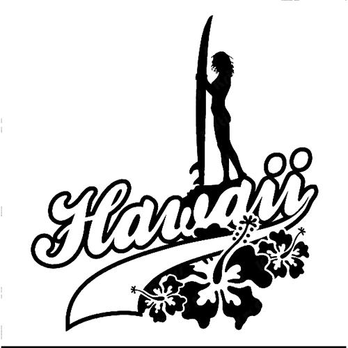 500x500 hawaii die cut vinyl decal pv540