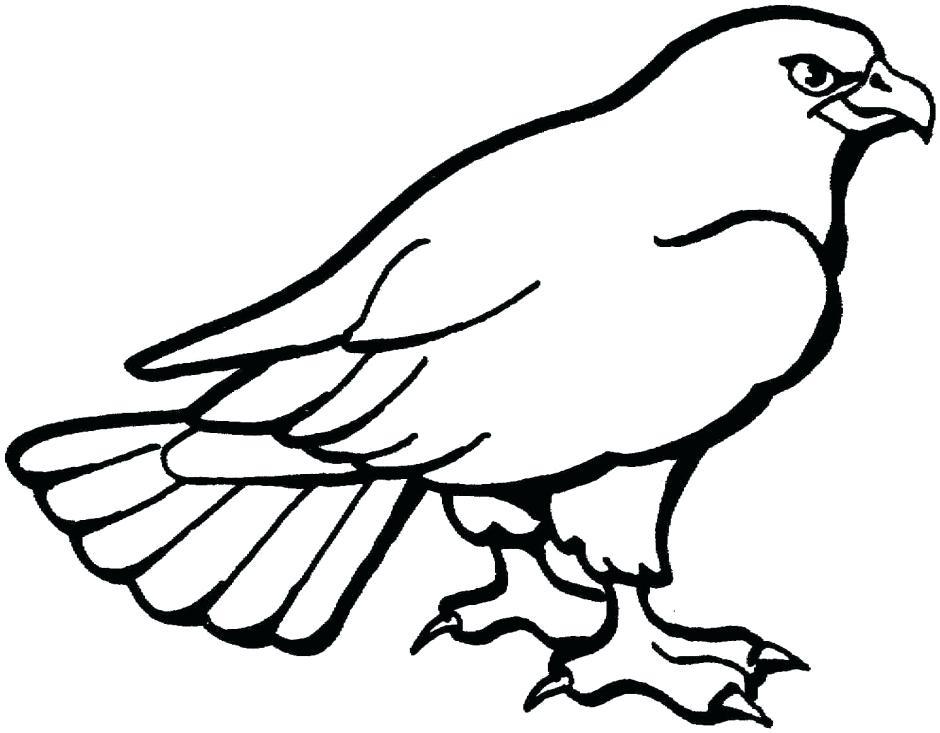 940x733 Bald Eagle Outline Clip Art Of A Coloring Page Of A Bald Eagle