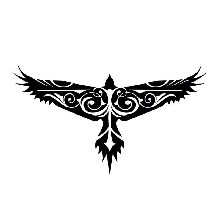 736x736 Free White Hawk Tattoo, Hanslodge Clip Art Collection