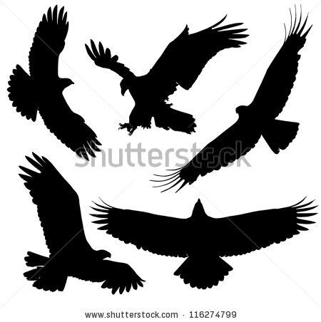 450x452 Eagle Silhouette On White Background