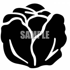 300x297 Silhouette Clipart Picture Of A Head Of Cabbage