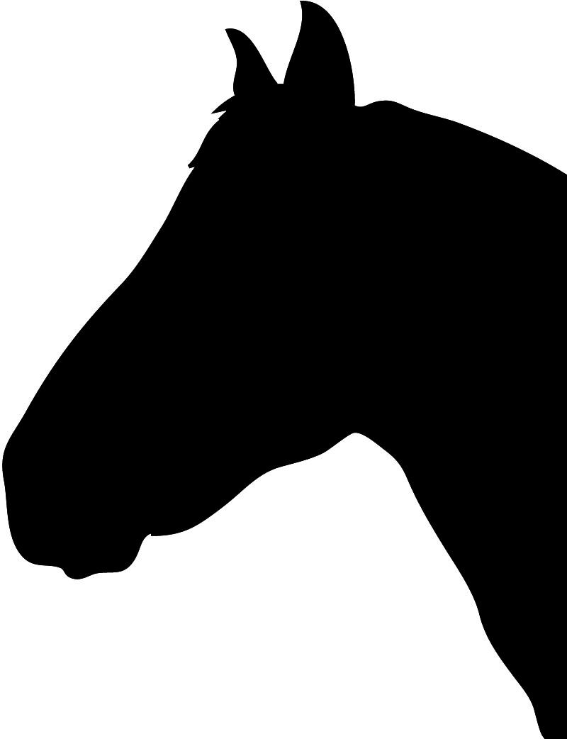 800x1042 Horse Silhouette