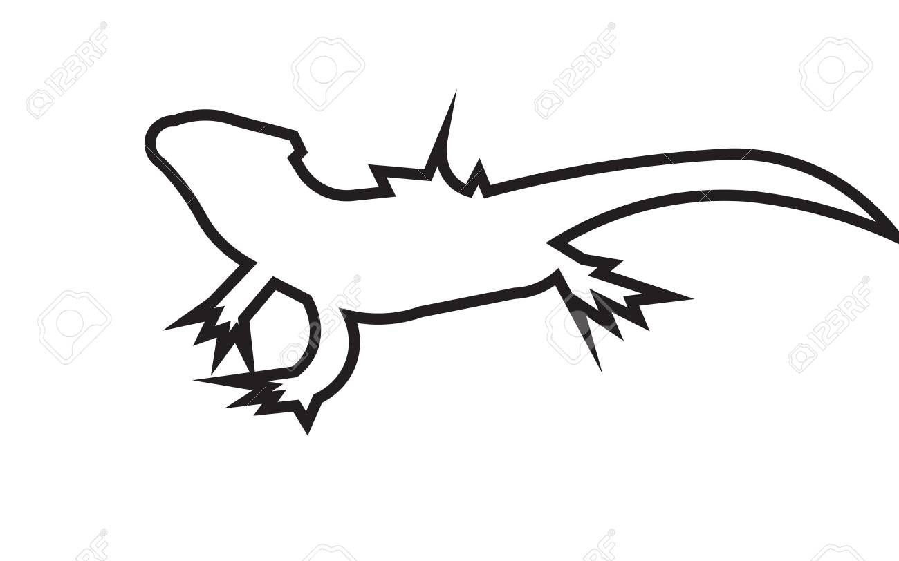 1300x812 Bearded Dragon Silhouette Outline On White Background Royalty Free