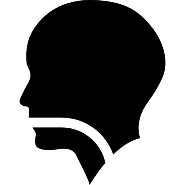626x626 Human Head Silhouette With A Line In Mouth Pharynx And Larynx