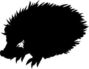 310x240 Search Photos Common Hedgehog
