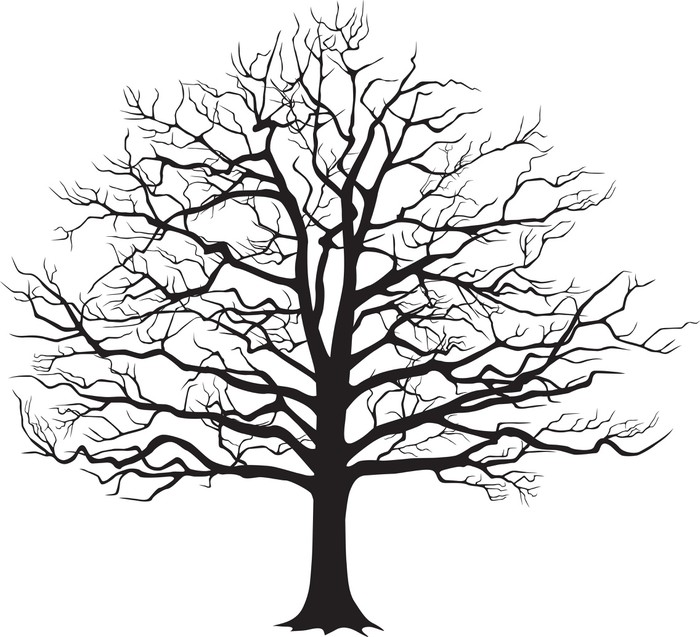 700x637 Black Silhouette Bare Tree Vector Illustration Poster Pixers