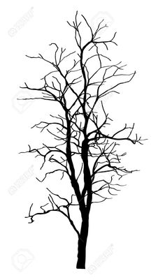 236x401 Elm Tree Silhouette Warrior Elm Tree, Tree