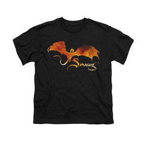300x300 The Hobbit The Battle Of Five Armies Smaug Fire Silhouette Youth