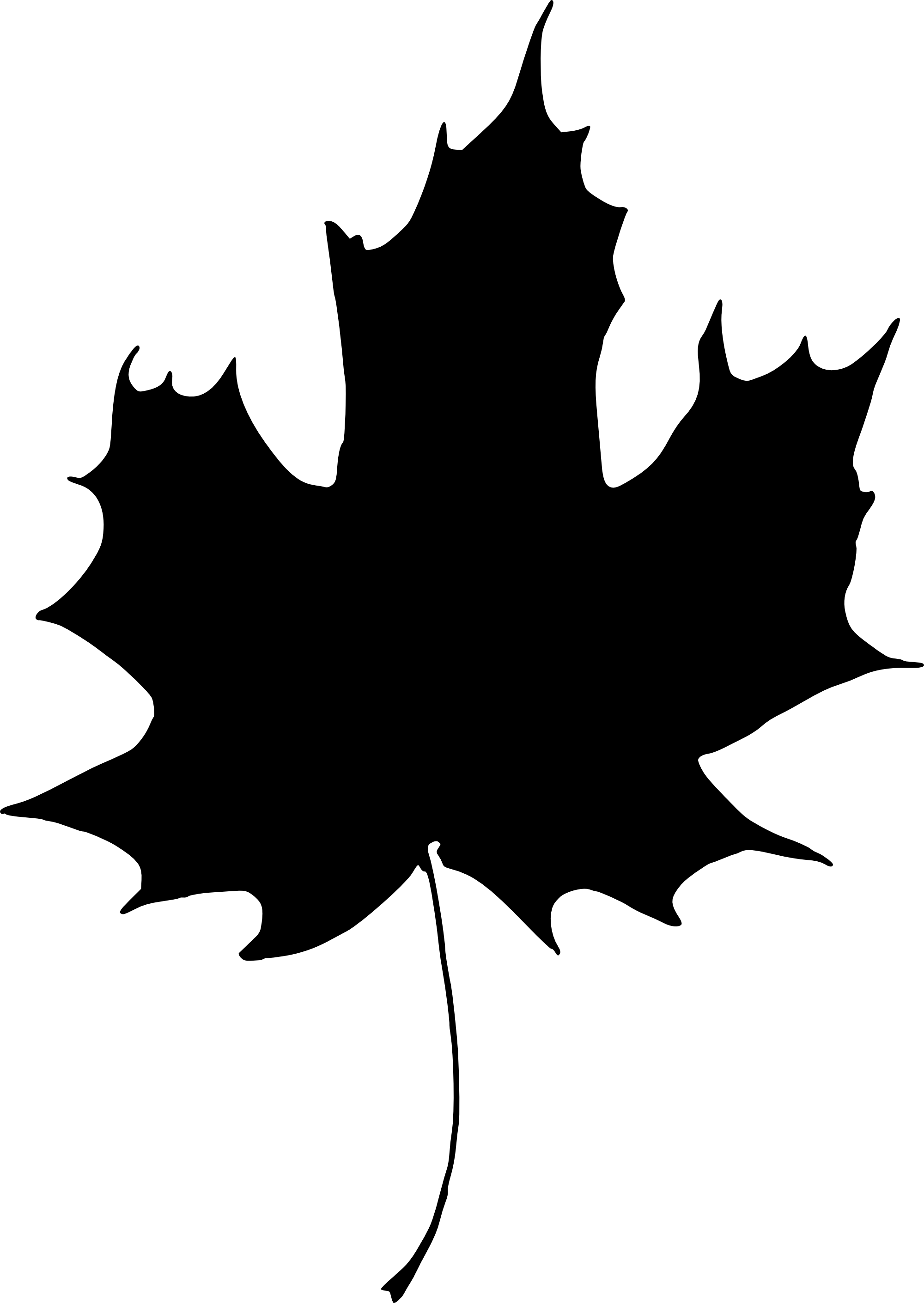 Holly Leaf Silhouette