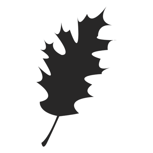 512x512 Maple Leaf Silhouette
