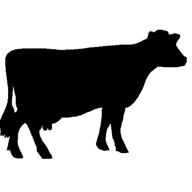 640x640 16.8cm11.7cm Fun Cow Cattle Silhouette Vinyl Car Styling Car