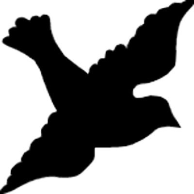 400x400 14 Psd White Dove Images