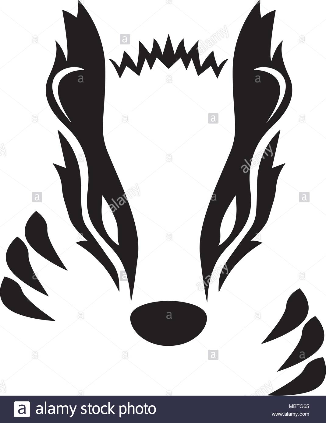 1070x1390 Honey Badger Cut Out Stock Images Amp Pictures