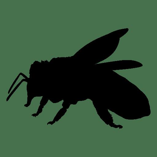 512x512 Honey Bee Silhouette