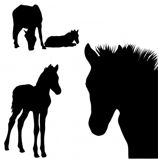 613x615 Horse Silhouettes Clipart Free Stock Photo