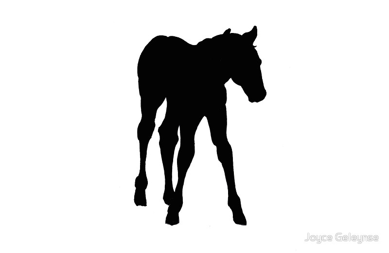 800x522 Baby Horse, Silhouette, Horse, Foal, Drawing Laptop Skins By
