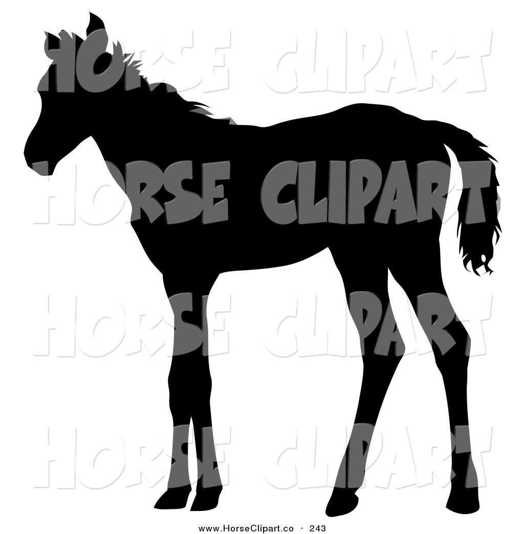 1024x1044 Royalty Free Silhouette Stock Horse Designs