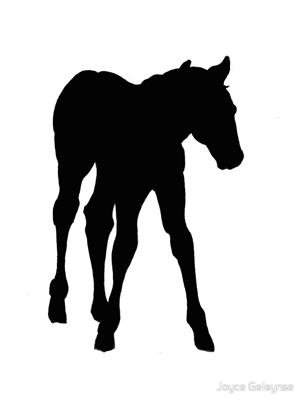 604x800 Baby Horse, Silhouette, Horse, Foal, Drawing Posters by Joyce