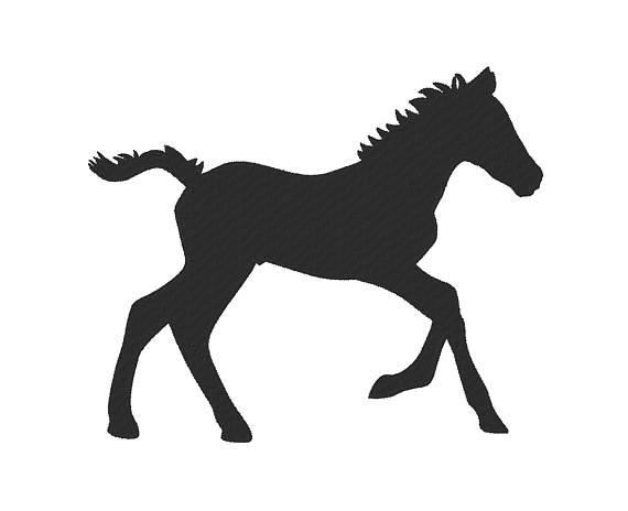 570x464 Baby Horse Colt Foal Filly Embroidery Machine Design