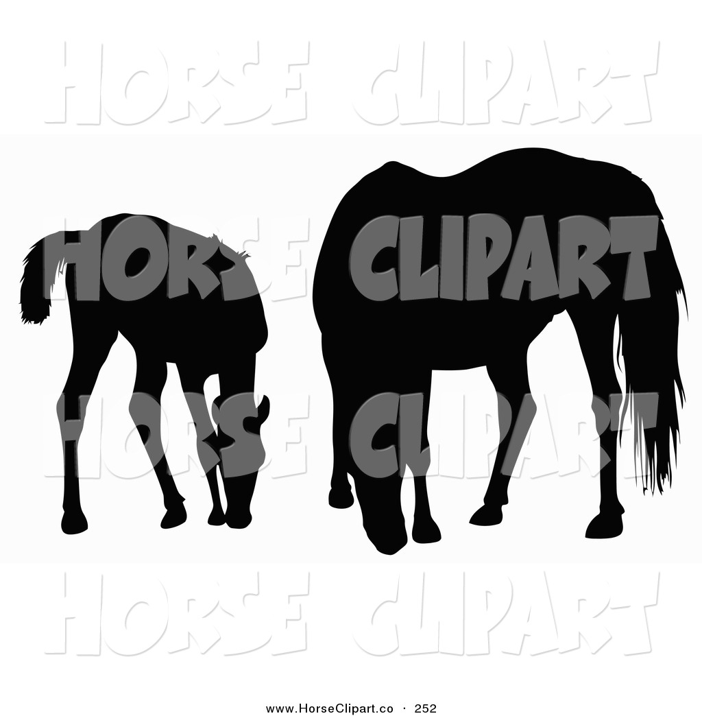 1024x1044 Clip Art Of A Silhouette Of A Foal And Horse Grazing On White By