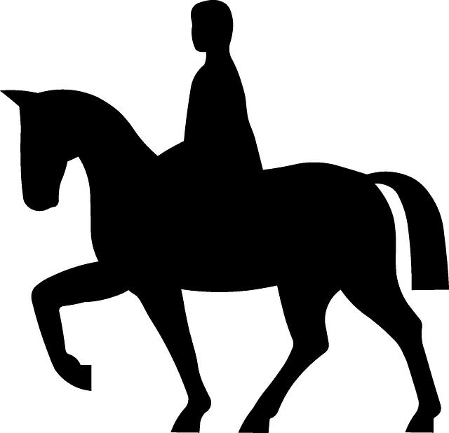 640x618 Horseback Riding, Equestrian, Riding, Rider, Horse