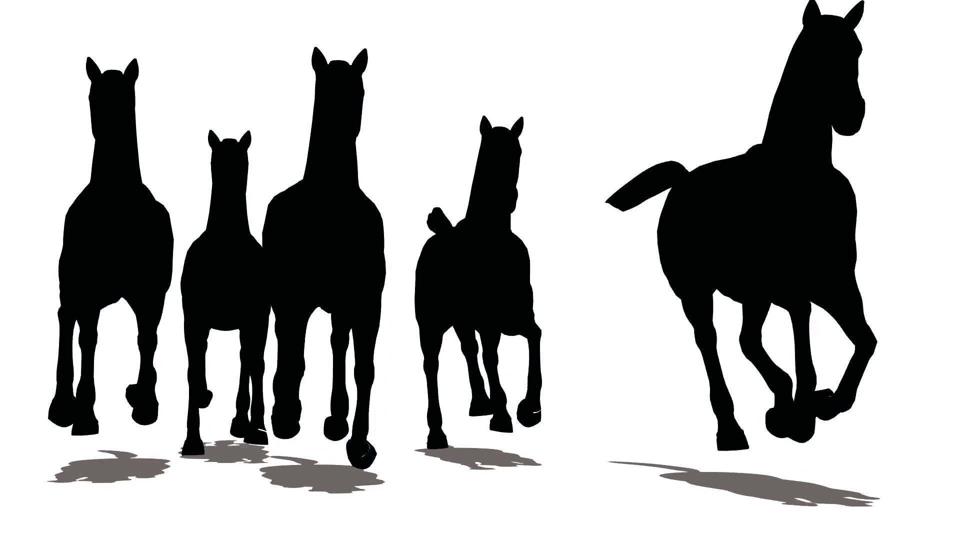 1920x1080 Run Of Small Herd Of Horses, Black Silhouette On White Background