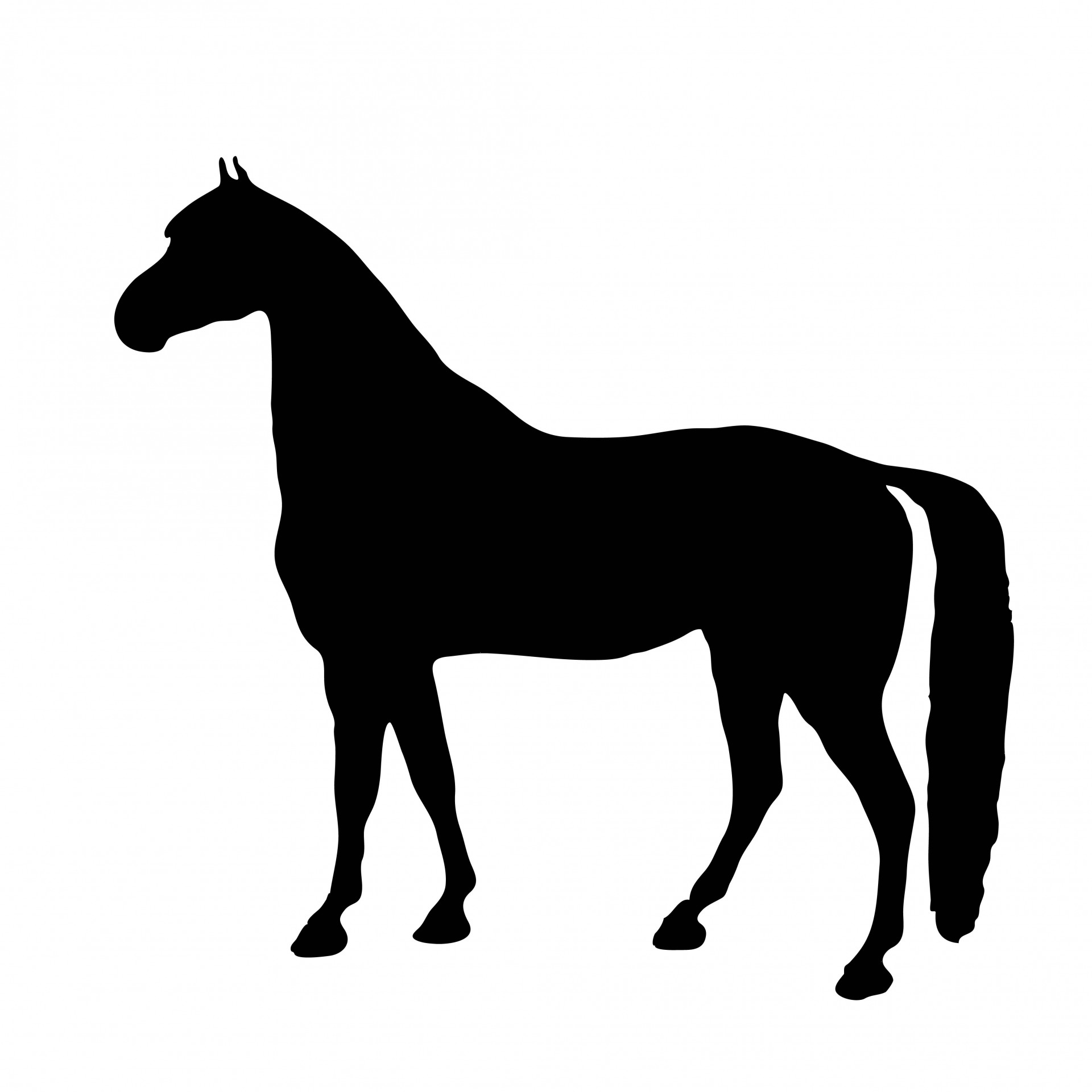 1920x1920 Horse Silhouette Clipart Free Stock Photo