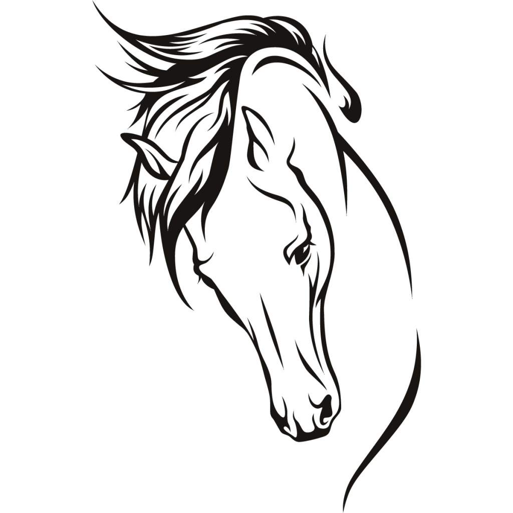 1024x1024 Horse Head Line Drawing Horse Head Silhouette Isolated On White