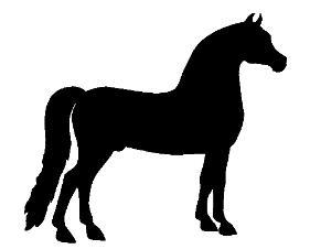 281x226 Morgan Horse Clipart