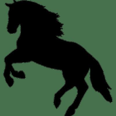 400x400 Vintage Horse Head Transparent Png