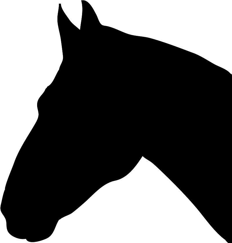800x840 Horse Silhouette