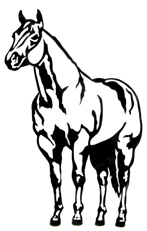864x1360 Quarter Horse Head Clip Art