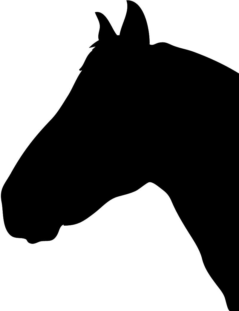 800x1042 Silhouette Horse Images Horse Silhouette Horse Head Silhouette