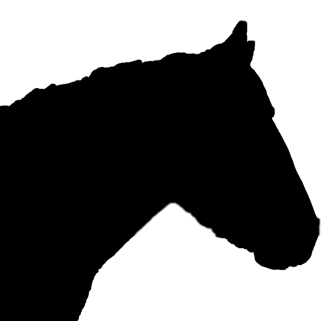 1024x1024 Horse Silhouette