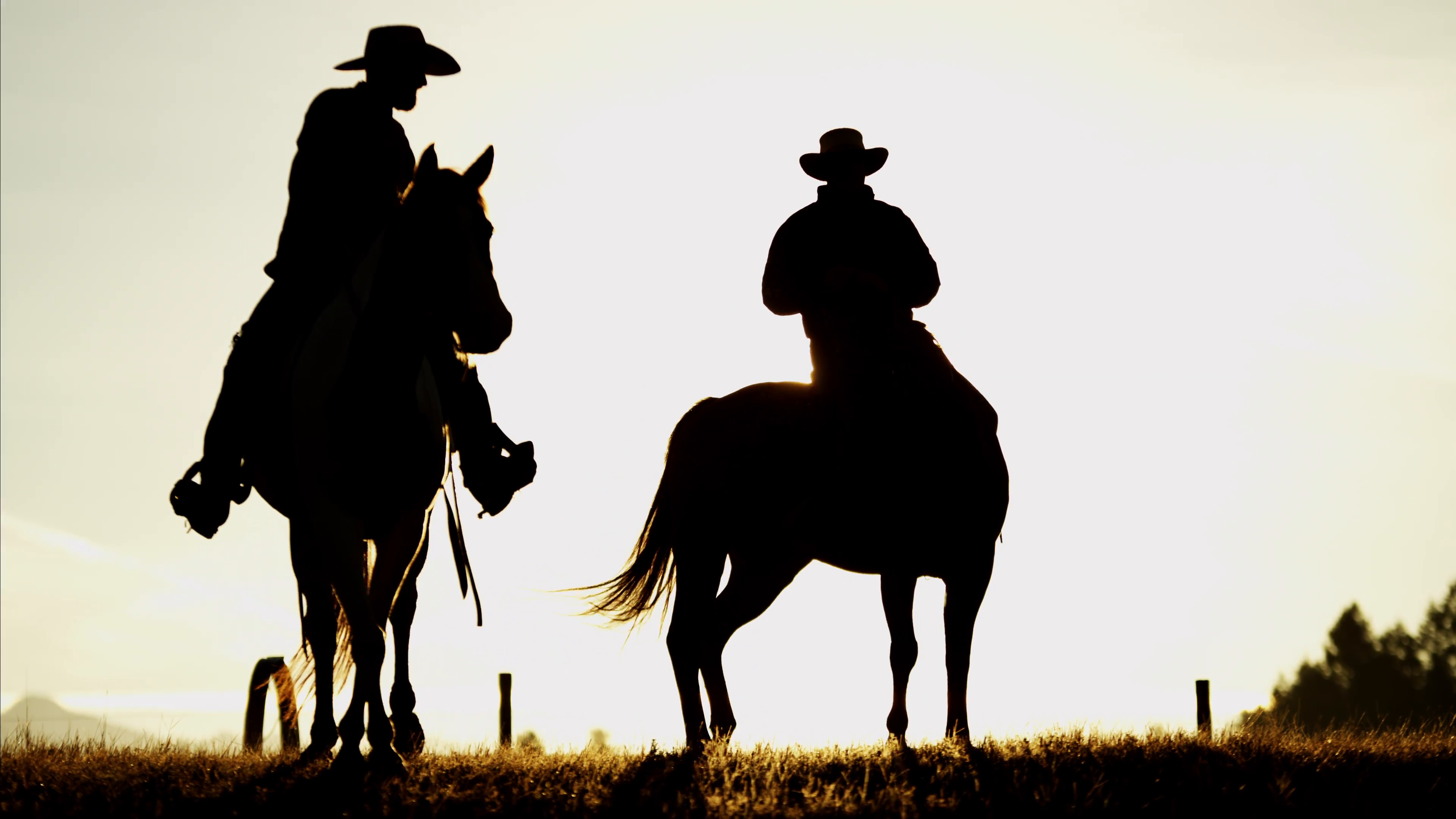 3840x2160 Silhouette Of Cowboy Riders In Forest Wilderness Area