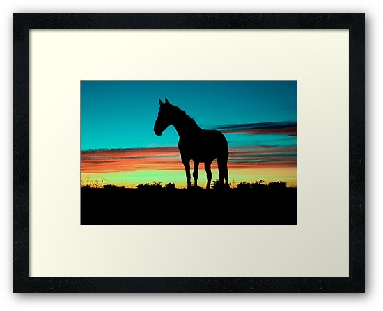 550x447 Humpy Horse Silhouette Sunset Psychedelic Framed Prints By