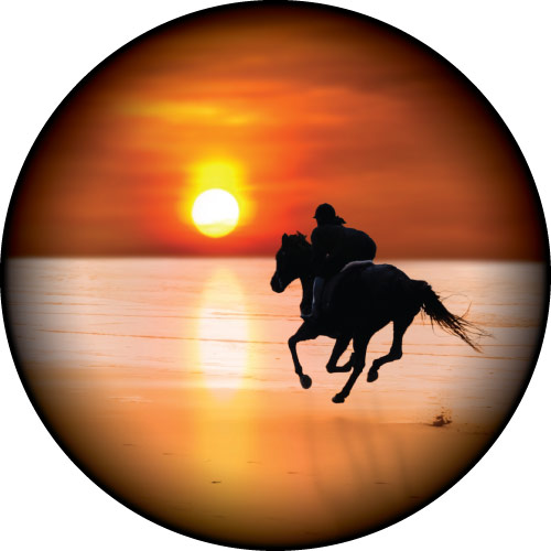 500x500 Sunset Beach Horse